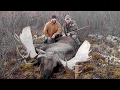 "66"" Yukon/Alaskan Moose with Widrig Outfitters 2011"