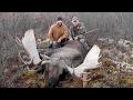 "66"" Yukon/Alaskan Moose with Widrig Outfitters 2011"