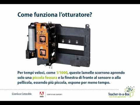 Fotocamere reflex: otturatore e sincronizzazione flash