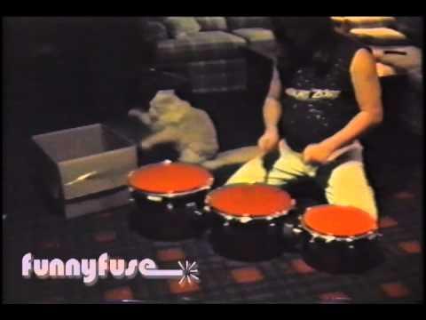 「貓鼓手」跟著主人一起打節奏!