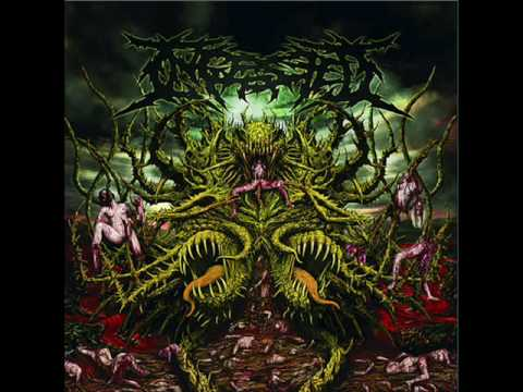 Ingested-Contorted Perception online metal music video by INGESTED