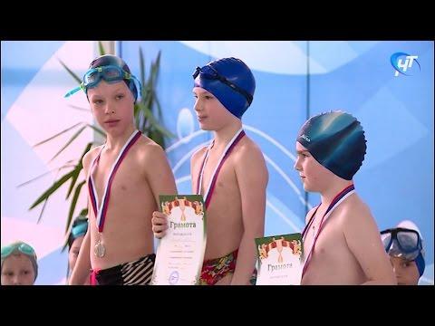 В Великом Новгороде прошли детские соревнования по плаванию
