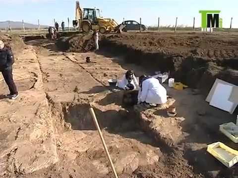 vulci e gli scavi di luciano bonaparte