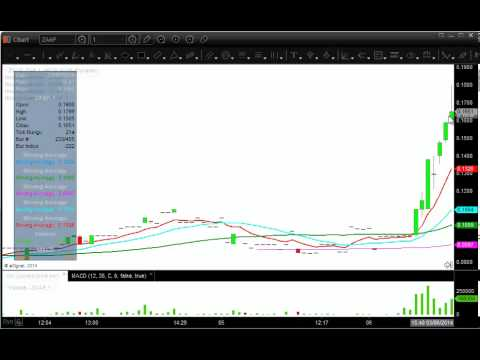 Free futures trading chat rooms