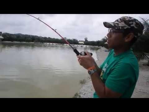 Umpan Mekong Catfish~Rawang Natural Exotic Fishing Pond  Part 1