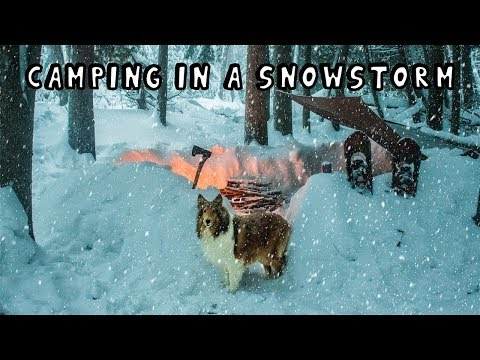 Winter Camping in a Snowstorm with My Dog - Thời lượng: 1:40:44.