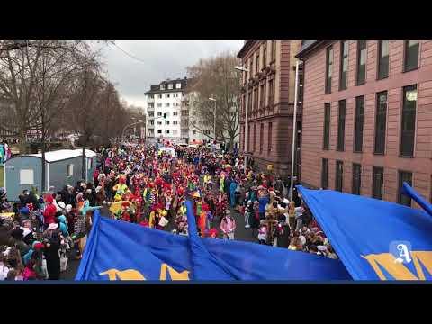 Impressionen vom Mainzer Rosenmontagszug 2018