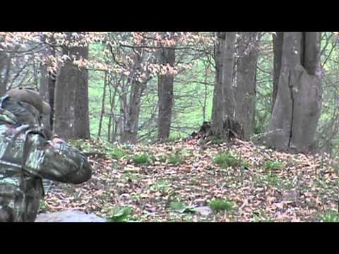 west virginia turkey hunt 2010