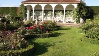#970 Eindrücke aus dem Victorian Garden bei David Austin