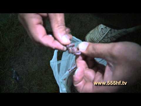 видео рыбалка на сома ночью