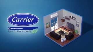 X-Power Inverter Carrier [2015]