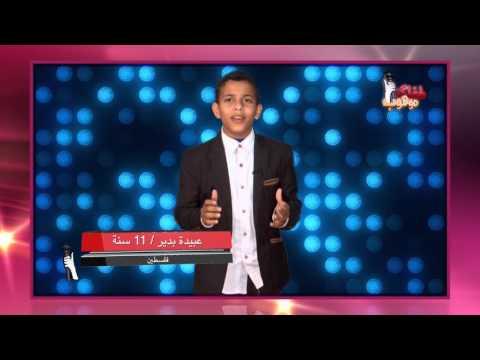 عبيدة بدير - تقيم الفنانة امل دباس