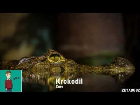 how to cure krokodil