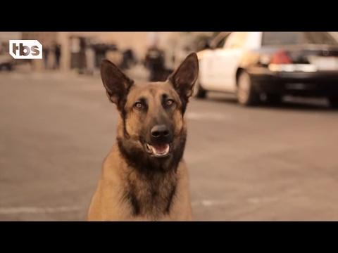 Dog | TBS
