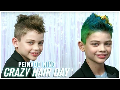 Peinado Crazy Hair Day Niño