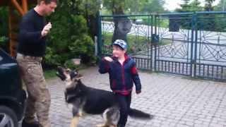 W końcu rękę mu upi**doli! Ojciec roku uczy psa jak bronić dziecko :D