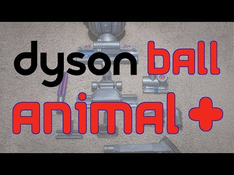 Costco Dyson Ball Animal+ Rapid Review & Unboxing