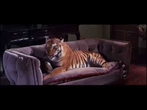 Black Zoo Preview Clip (Warner Archive Collection)