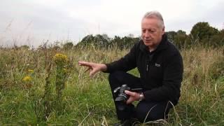 Video Extreme Close Up Photography with your Panasonic Lumix Bridge camera MP3, 3GP, MP4, WEBM, AVI, FLV Juli 2018