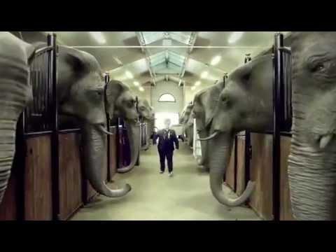 Surfa Com Hem Style - swedish commercial  (Gangnam style video cover)
