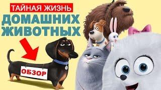 Зверополис смотреть онлайн бесплатно на русском — 16 тыс. видео