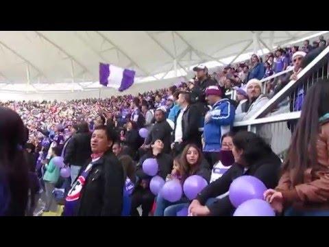 . SU HINCHADA SIEMPRE ESTA JUNTO AL LEON - Los Lilas - Club Deportes Concepción