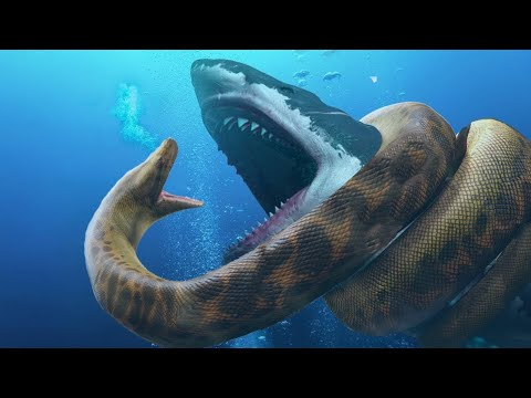 Top 10 Biggest and Most Dangerous Animals