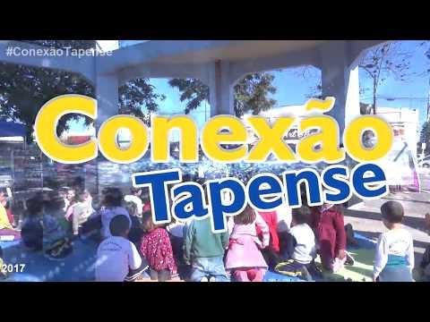 CONFIRA AS NOVIDADES SOBRE O PROJETO EÓLICO DE TAPES
