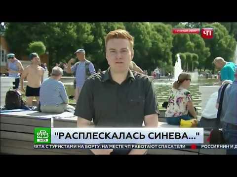 Прямой эфир с Дня ВДВ 2 августа 2017