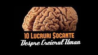 10 LUCRURI ȘOCANTE DESPRE CREIERUL UMAN