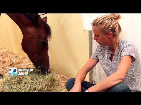 Communication Intuitive: Apprenez à parler avec votre cheval