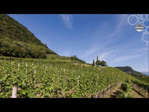 Weinland Südtirol - Etschtal