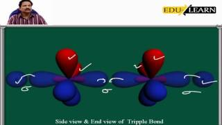 <strong>Hybrid Orbitals </strong> Mr. Joseph D – Ph.D IIT Kanpur