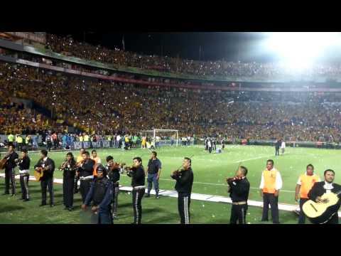 Tigres vs Internacional  libres y lokos - Libres y Lokos - Tigres