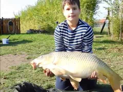 Berek horgászat Október 2015