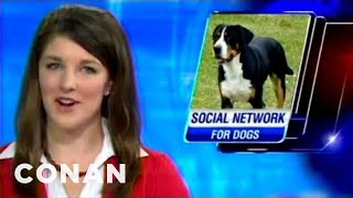 Is It Time for Dogs to Have a Social Network of Their Own?