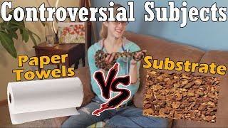 Con-Sub: Paper Towels vs Substrate by Snake Discovery