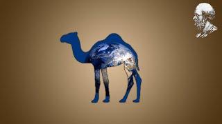 Eratosthène - Un bâton et un chameau pour mesurer la Terre