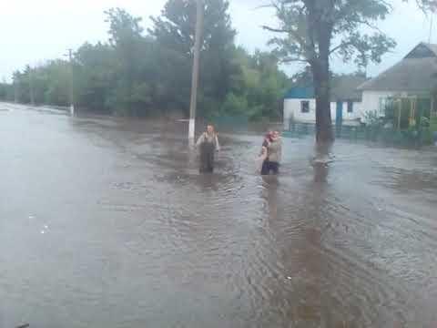 Гуляйпільський район: рятувальники евакуювали бабусю та 10-річну онуку з будинку, який підтопило (відео)