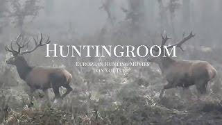 Video Jagd auf Keiler, Rothirsch und Mufflon in Europa (Red Stag, Wildboar and Roedeer Hunting in Europe) MP3, 3GP, MP4, WEBM, AVI, FLV Oktober 2017