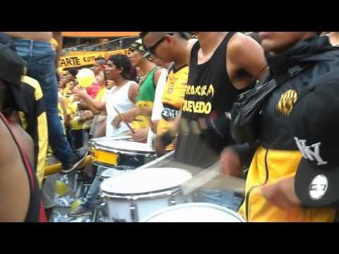 La Murga de la Sur - Barcelona yo te quiero mas y mas - Sur Oscura - Barcelona Sporting Club