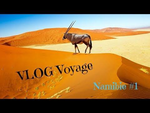 VLOG VOYAGE | Namibie #1 : paysages, pistes et quelques animaux.