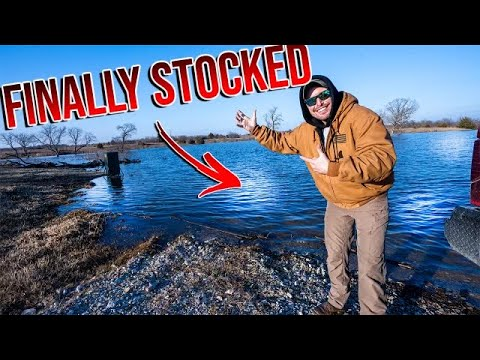 Transferring The FIRST Fish To My Private Lake!! - Private Lake Build