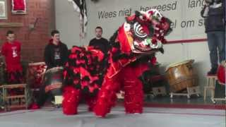 Chinese New Year 2013 - Lion Dance