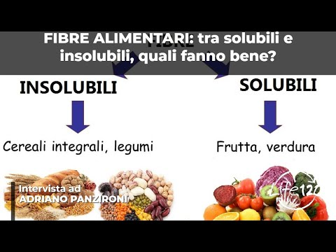non tutte le fibre alimentari fanno bene: ecco il perché!