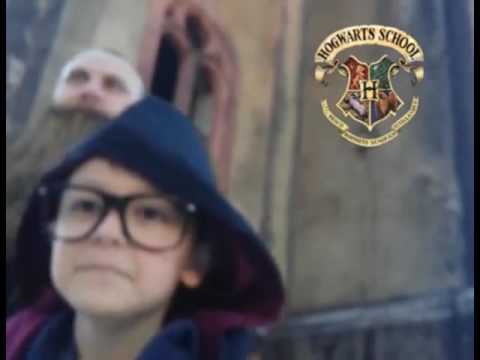Harry Potter e a Porta Secreta