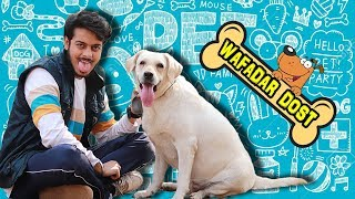 WAFADAR DOST || Cute Relationship Between DOG and HUMAN || PREM BHATI