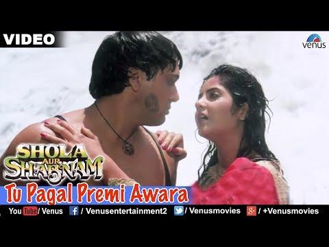 Download Tu Pagal Premi Awara Full Video Song | Shola Aur Shabnam | Govinda, Divya Bharati | Romantic Song HD Mp4 3GP Video and MP3