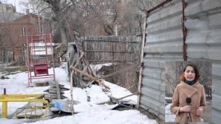 В центре Усть-Каменогорска огромная яма превратилась в лес