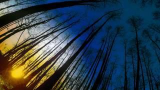 Video Jan Saska - Dream